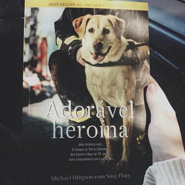 adoravel heroina_thunder dog